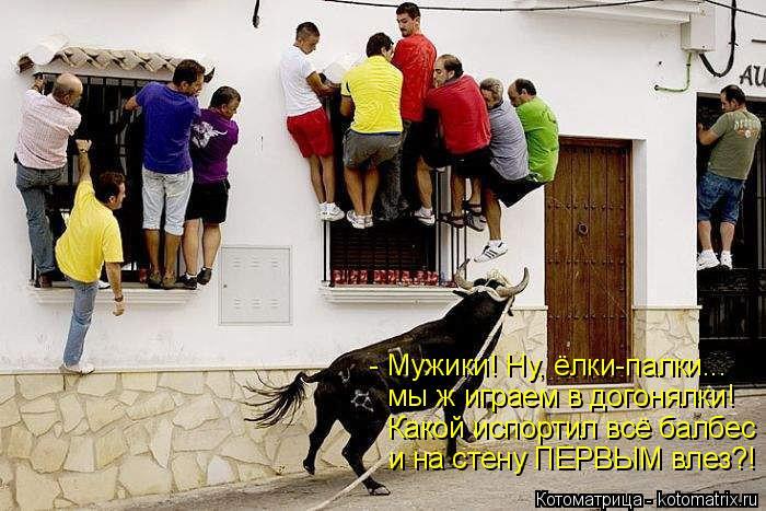 Котоматрица: - Мужики! Ну, ёлки-палки... мы ж играем в догонялки! Какой испортил всё балбес и на стену ПЕРВЫМ влез?!
