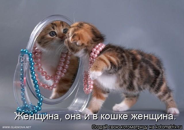 Котоматрица: Женщина, она и в кошке женщина.