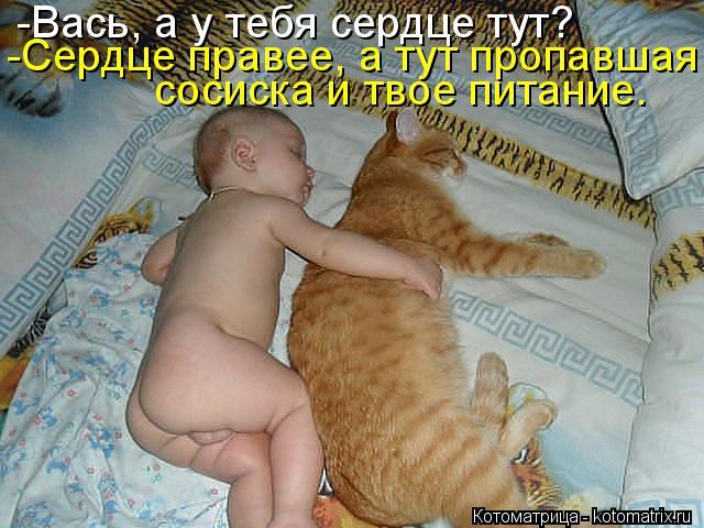 http://kotomatrix.ru/images/lolz/2014/10/12/kotomatritsa_hZ.jpg
