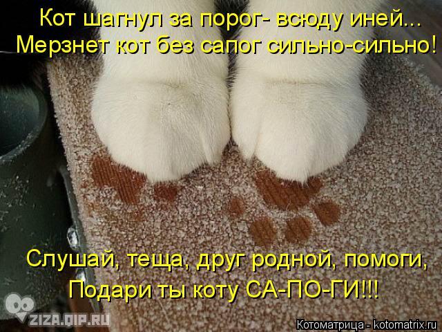 Котоматрица: Кот шагнул за порог- всюду иней... Мерзнет кот без сапог сильно-сильно! Слушай, теща, друг родной, помоги, Подари ты коту СА-ПО-ГИ!!!
