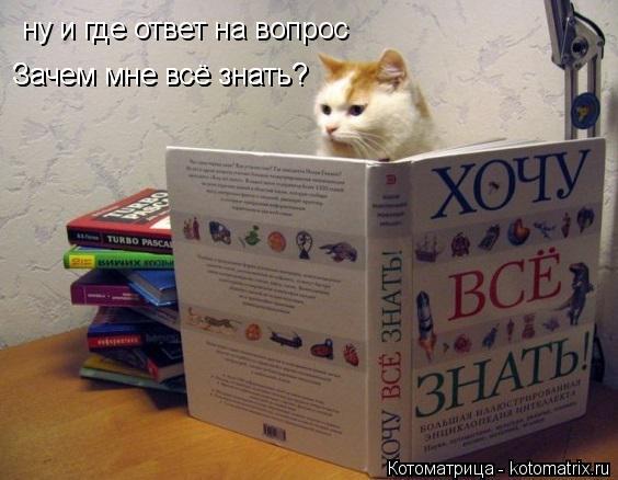 Котоматрица: ну и где ответ на вопрос Зачем мне всё знать? Зачем мне всё знать?