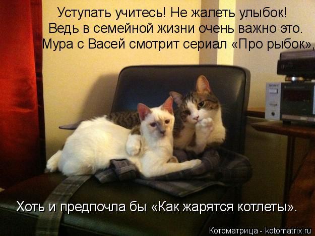 http://kotomatrix.ru/images/lolz/2014/10/15/kotomatritsa_3F.jpg