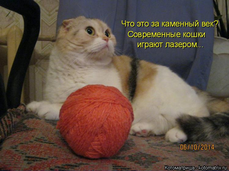 Котоматрица: Что это за каменный век? Современные кошки играют лазером...
