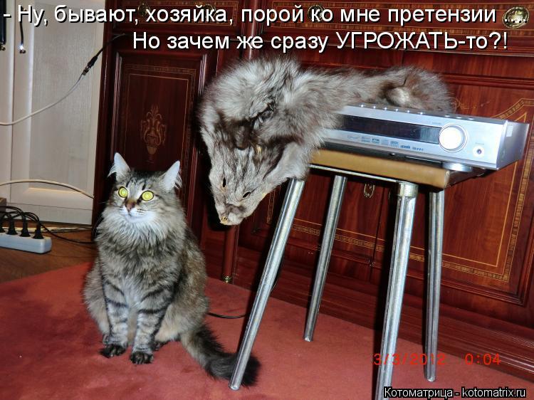 Котоматрица: - Ну, бывают, хозяйка, порой ко мне претензии .... Но зачем же сразу УГРОЖАТЬ-то?!