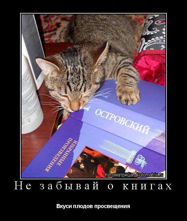 Котоматрица: Не забывай о книгах Вкуси плодов просвещения