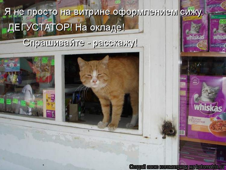 Котоматрица: Я не просто на витрине оформлением сижу. ДЕГУСТАТОР! На окладе! Спрашивайте - расскажу!