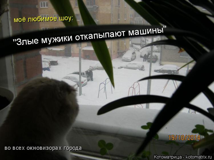 """Котоматрица: моё любимое шоу: """"Злые мужики откапыпают машины"""" во всех окновизорах города"""