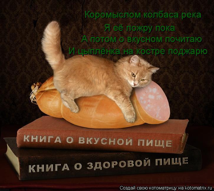 Котоматрица: Коромыслом колбаса река Я её пожру пока А потом о вкусном почитаю И цыплёнка на костре поджарю
