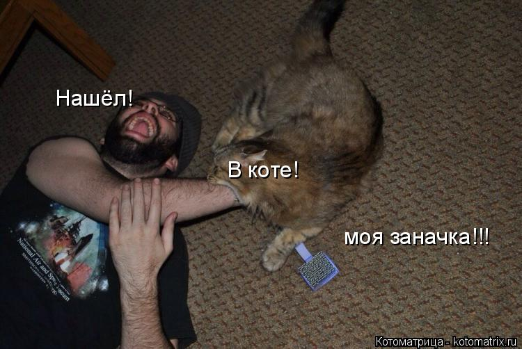 Котоматрица: Нашёл! В коте! моя заначка!!!