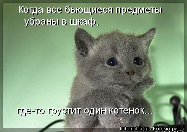 Котоматрица: Когда все бьющиеся предметы убраны в шкаф, где-то грустит один котенок...