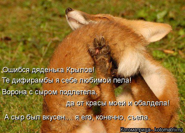 http://kotomatrix.ru/images/lolz/2014/10/22/kotomatritsa_nVV.jpg
