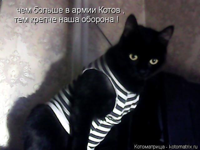Котоматрица: чем больше в армии Котов , тем крепче наша оборона !