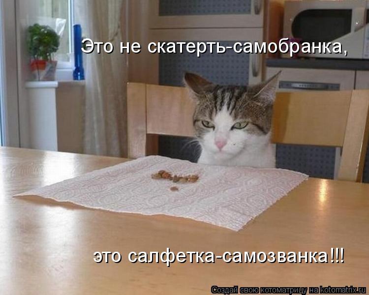 Котоматрица: Это не скатерть-самобранка, это салфетка-самозванка!!!