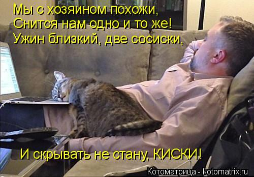 http://kotomatrix.ru/images/lolz/2014/10/25/kotomatritsa_8.jpg