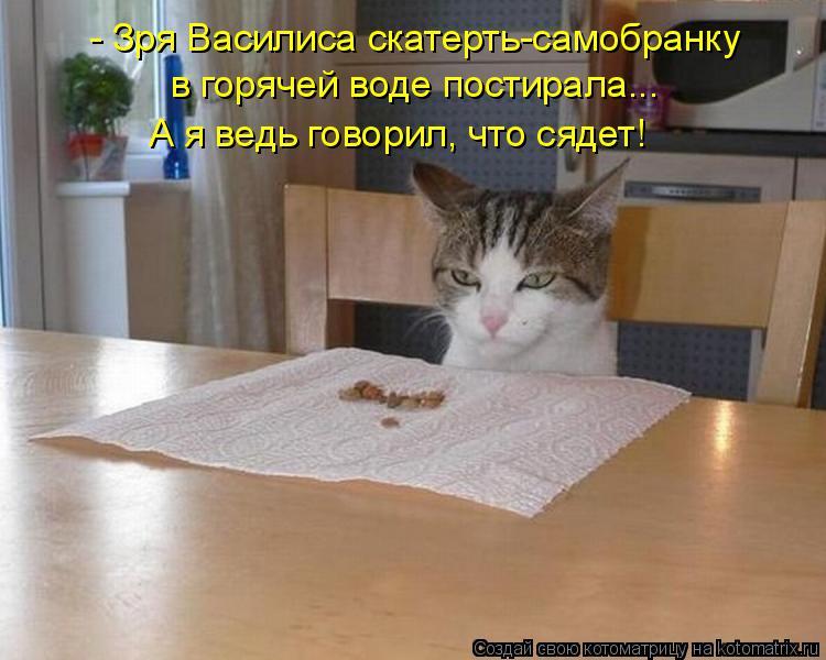 Котоматрица: - Зря Василиса скатерть-самобранку в горячей воде постирала... А я ведь говорил, что сядет!