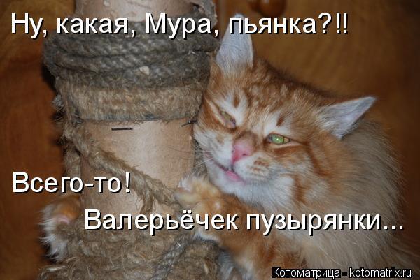 Котоматрица: Ну, какая, Мура, пьянка?!! Всего-то!  Валерьёчек пузырянки...