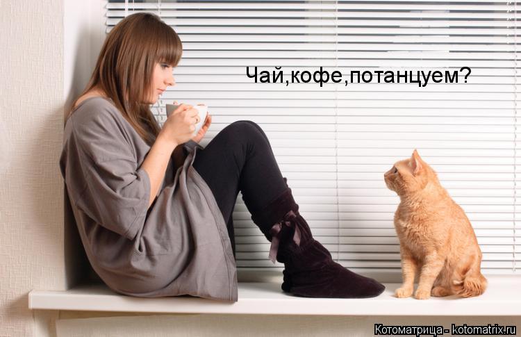 Котоматрица: Чай,кофе,потанцуем?