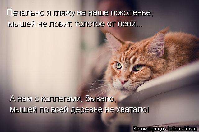 Котоматрица: Печально я гляжу на наше поколенье, мышей не ловит, толстое от лени... А нам с коллегами, бывапо, мышей по всей деревне не хватало!