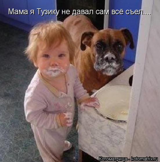 Котоматрица: Мама я Тузику не давал сам всё съел....