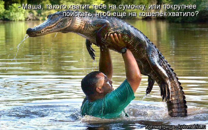 http://kotomatrix.ru/images/lolz/2014/10/29/kotomatritsa_TB.jpg