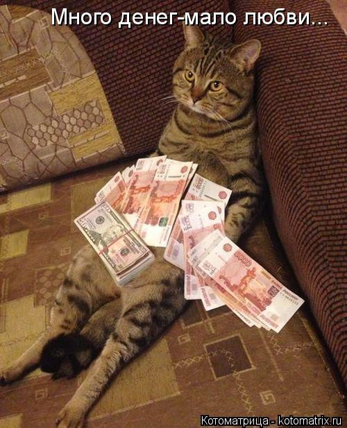 Котоматрица: Много денег-мало любви...