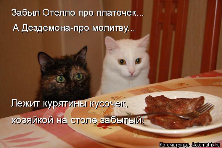 http://kotomatrix.ru/images/lolz/2014/10/30/kotomatritsa_S.jpg