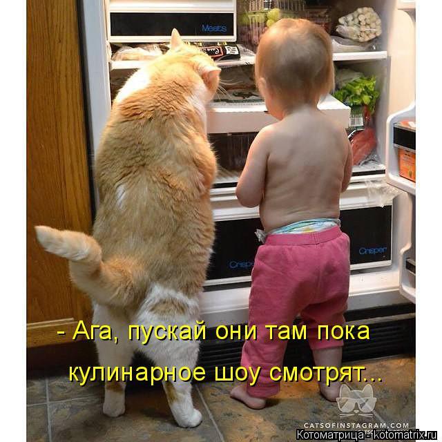 Котоматрица: - Ага, пускай они там пока  кулинарное шоу смотрят...