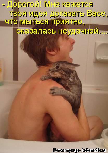 Котоматрица: - Дорогой! Мне кажется  что мыться приятно, оказалась неудачной.... твоя идея доказать Васе,