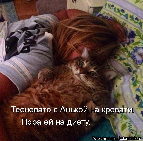 Котоматрица: Тесновато с Анькой на кровати. Пора ей на диету.