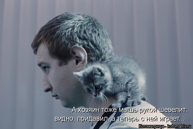 Котоматрица: А хозяин тоже мышь рукой шевелит:  видно, придавил, а теперь с ней играет...