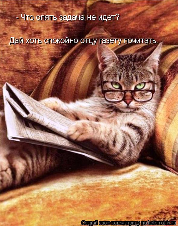 Котоматрица: - Что опять задача не идет? Дай хоть спокойно отцу газету почитать.