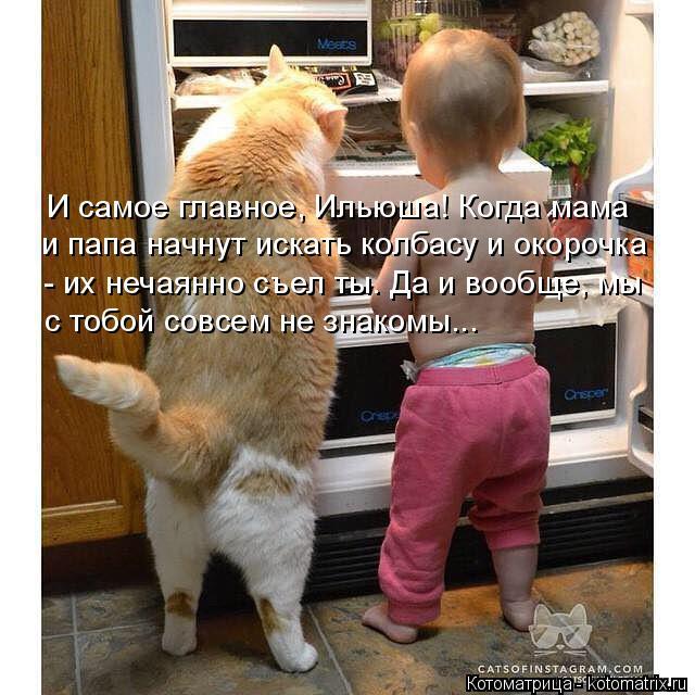Котоматрица: И самое главное, Ильюша! Когда мама  и папа начнут искать колбасу и окорочка - их нечаянно съел ты. Да и вообще, мы  с тобой совсем не знакомы...