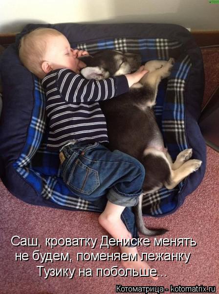 Котоматрица: Саш, кроватку Дениске менять  не будем, поменяем лежанку Тузику на побольше...