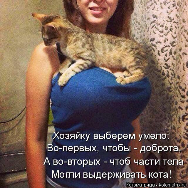 Котоматрица: Хозяйку выберем умело: Во-первых, чтобы - доброта, А во-вторых - чтоб части тела Могли выдерживать кота!