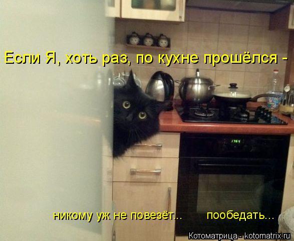 Котоматрица: никому уж не повезёт...       пообедать... Если Я, хоть раз, по кухне прошёлся -