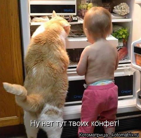 Котоматрица: Ну нет тут твоих конфет!