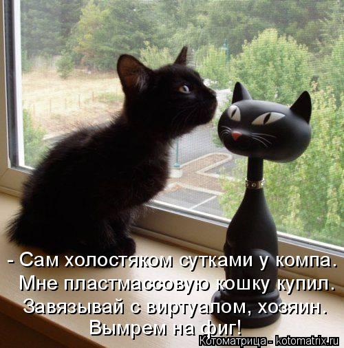 Котоматрица: - Сам холостяком сутками у компа. Мне пластмассовую кошку купил. Завязывай с виртуалом, хозяин. Вымрем на фиг!