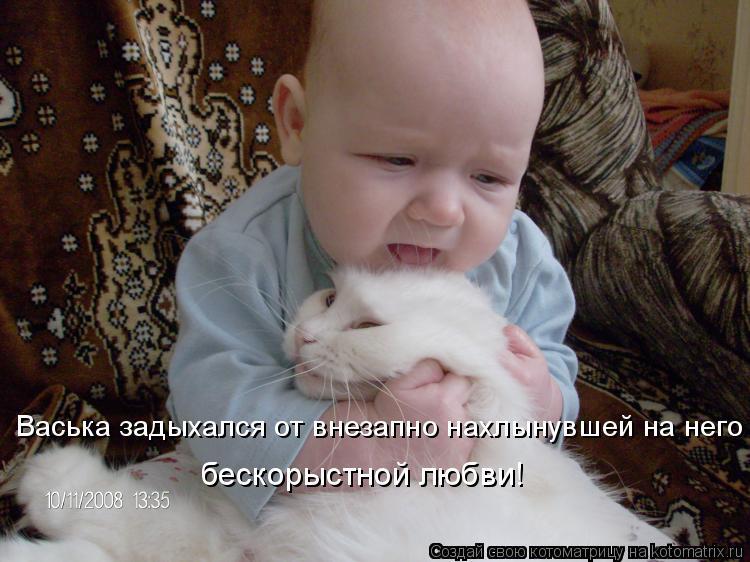 Котоматрица: Васька задыхался от внезапно нахлынувшей на него бескорыстной любви!