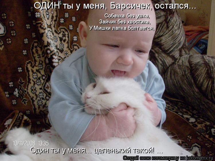 Котоматрица: ОДИН ты у меня, Барсичек, остался... У Мишки лапка болтается, Зайчик без хвостика, Собачка без ушка, Один ты у меня... целенький такой! ...