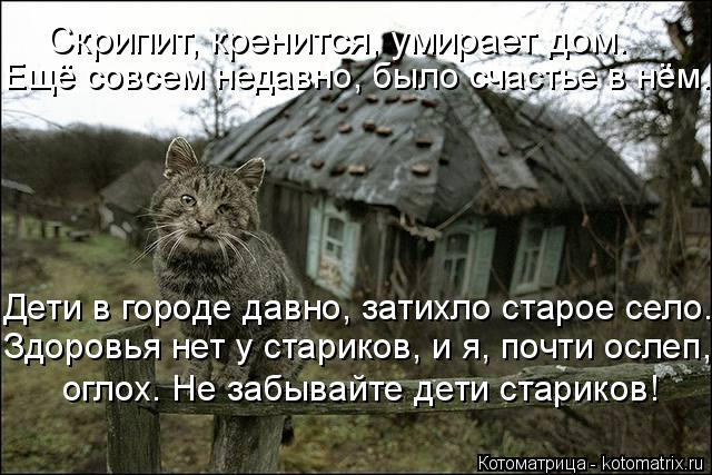 Котоматрица: Скрипит, кренится, умирает дом. Ещё совсем недавно, было счастье в нём. Дети в городе давно, затихло старое село. Здоровья нет у стариков, и я,