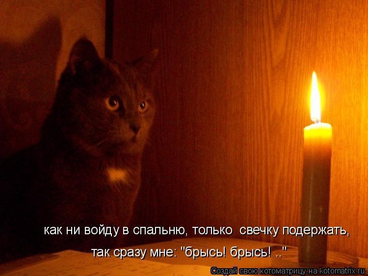 """Котоматрица: как ни войду в спальню, только  свечку подержать,  так сразу мне: """"брысь! брысь! .."""""""