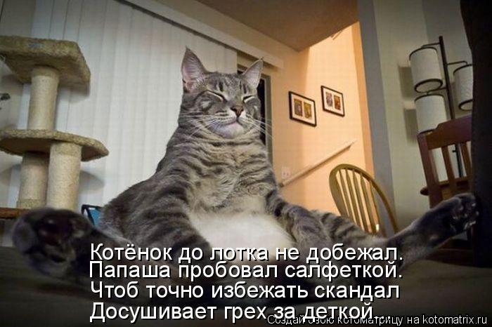 Котоматрица: Досушивает грех за деткой... Чтоб точно избежать скандал Папаша пробовал салфеткой. Котёнок до лотка не добежал.