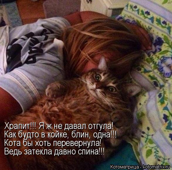 Котоматрица: Храпит!!! Я ж не давал отгула! Как будто в койке, блин, одна!!! Кота бы хоть перевернула! Ведь затекла давно спина!!!
