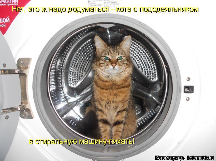 Котоматрица: Нет, это ж надо додуматься - кота с пододеяльником в стиральную машину пихать!