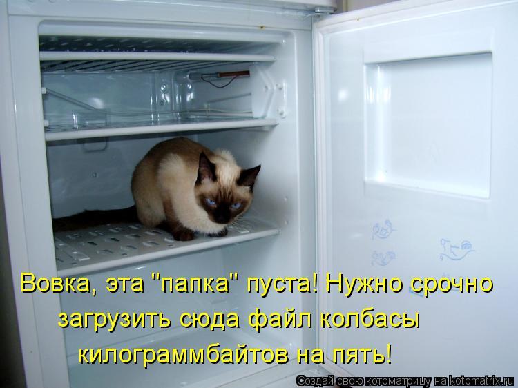 """Котоматрица: Вовка, эта """"папка"""" пуста! Нужно срочно загрузить сюда файл колбасы  килограммбайтов на пять!"""
