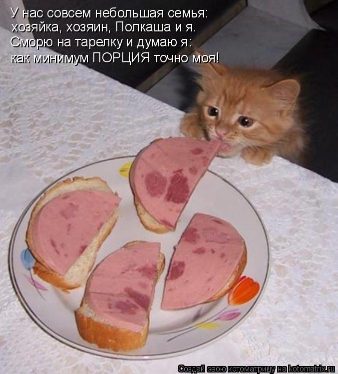 Котоматрица: У нас совсем небольшая семья: хозяйка, хозяин, Полкаша и я. Сморю на тарелку и думаю я: как минимум ПОРЦИЯ точно моя!