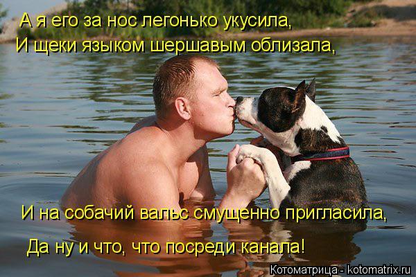 Котоматрица: А я его за нос легонько укусила, И щеки языком шершавым облизала, И на собачий вальс смущенно пригласила, Да ну и что, что посреди канала!