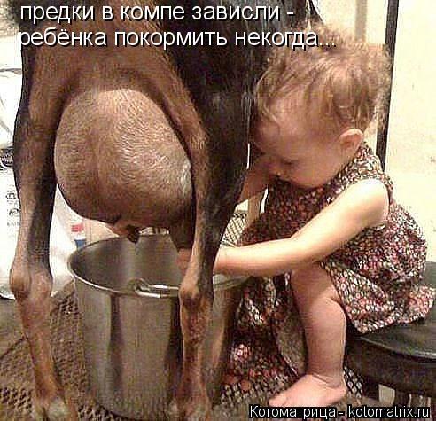 Котоматрица: предки в компе зависли -  ребёнка покормить некогда...