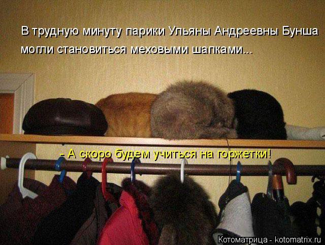 Котоматрица: В трудную минуту парики Ульяны Андреевны Бунша могли становиться меховыми шапками...  - А скоро будем учиться на горжетки!