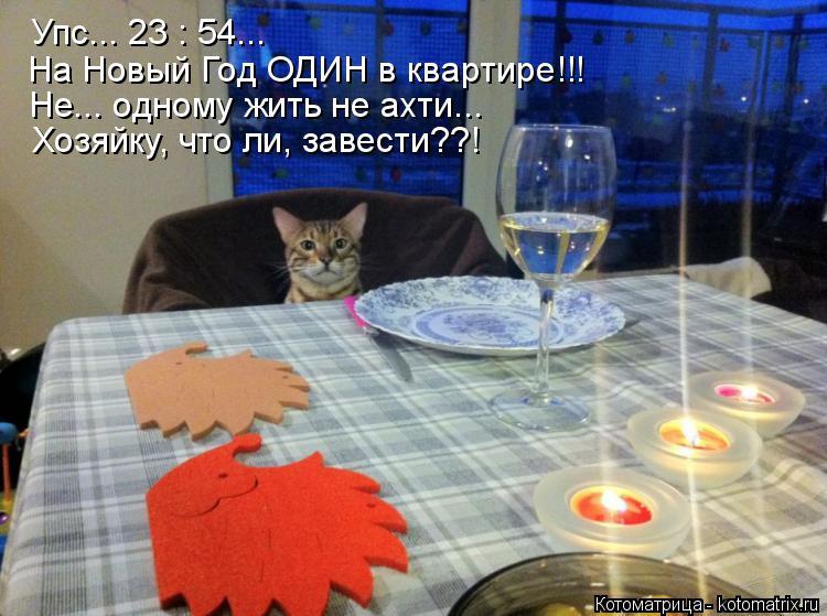 Котоматрица: Упс... 23 : 54... На Новый Год ОДИН в квартире!!! Не... одному жить не ахти... Хозяйку, что ли, завести??!